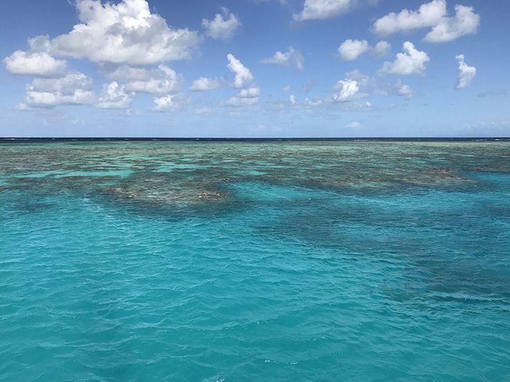 rafa koralowa, rafa, kamperem przezaustralię, australia, ocean