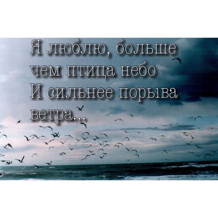 """I love, more than birds of the sky and stronger the wind"" Words of Russian song. Русская текст песня Группа Челси- Я люблю"