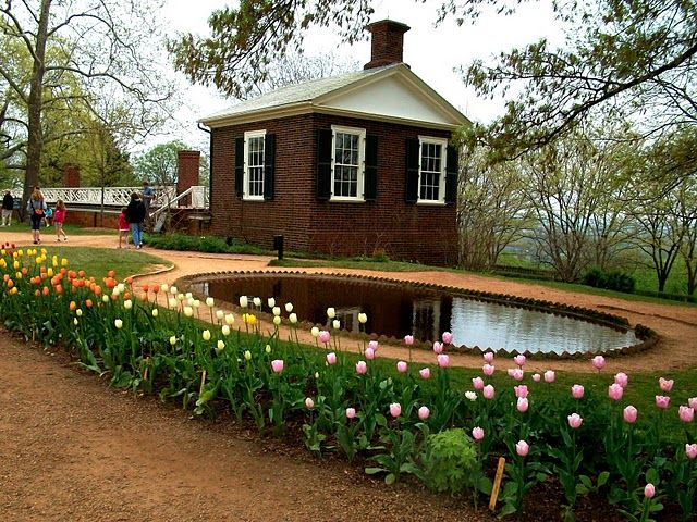 Flowers By The Pond At Monticello