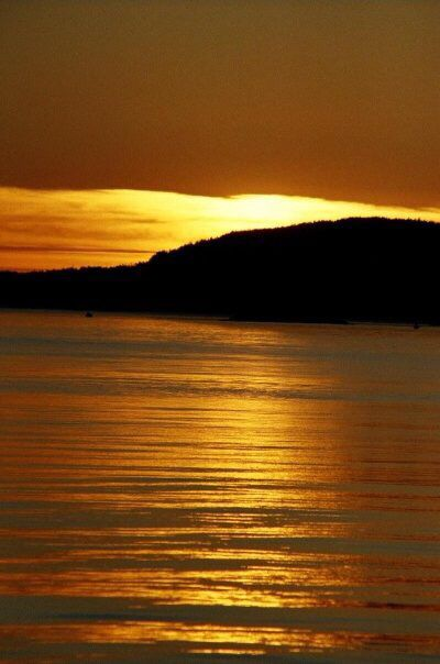 Vancouver Island coastline near Victoria.
