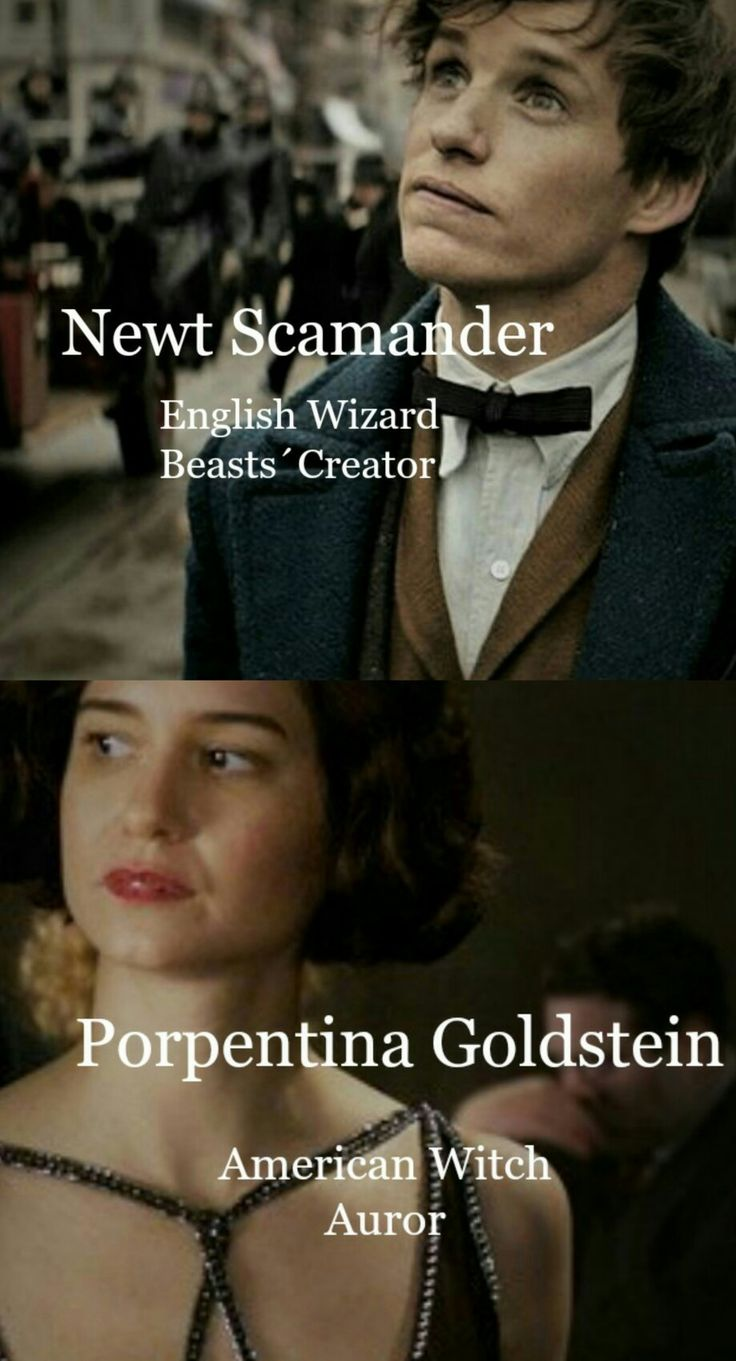 Newt and Tina   Newtina   Fantastic Beasts and Where to Find Them