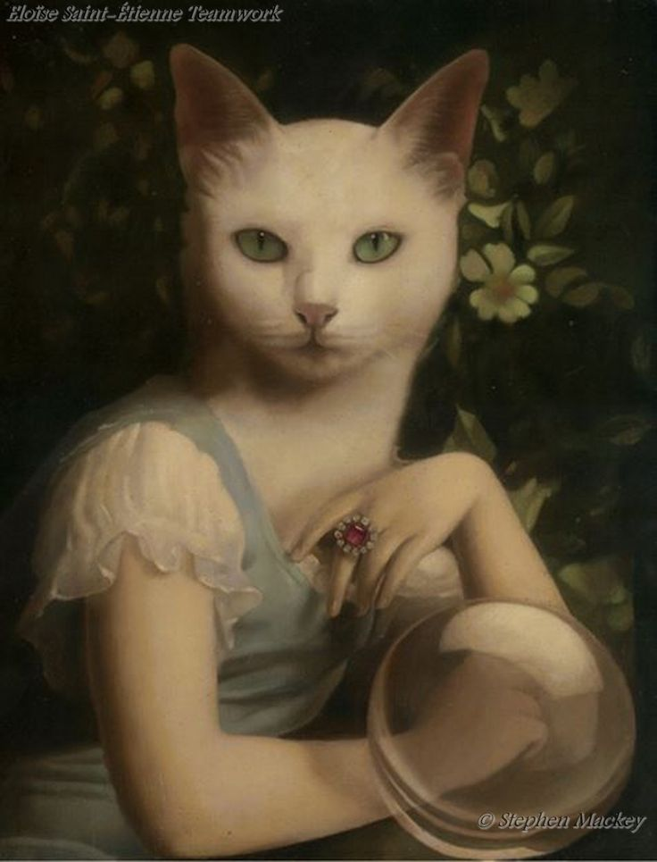Unspeakable Fortune by Stephen Mackey. Hermione, you drank the wrong polyjuice potion again.
