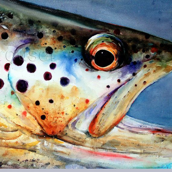 BROWN TROUT Watercolor Fish Art Print by Dean by DeanCrouserArt