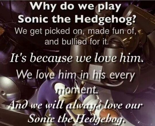 Why do we play Sonic the Hedgehog? We get picked on, made fun of, and bullied for it. It's because we love him. We love him in his every moment. And we will always love our Sonic the Hedgehog.