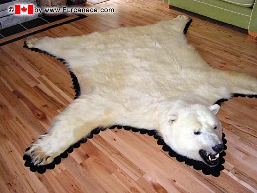 White Rug, Awful, Bears, Awesome