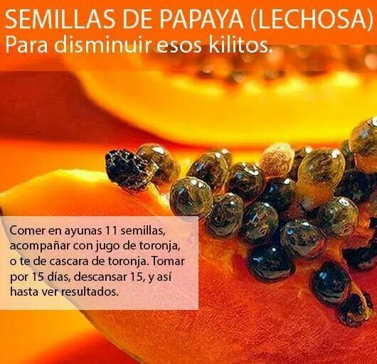 Semillas de papaya para adelgazar comidas sanas pinterest - Comida sana para adelgazar ...