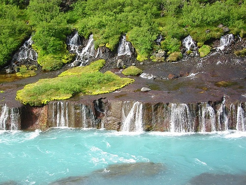 Hraunfossar. Crystal clear rivulets spanning about 900 metres that stream directly out of the Hallmundarhraun lava field