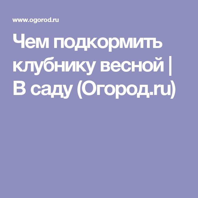 Чем подкормить клубнику весной | В саду (Огород.ru)