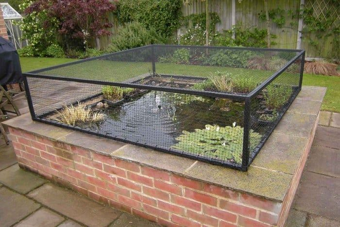 Raised Steel Pond Cover Pond Covers Raised Pond Pond