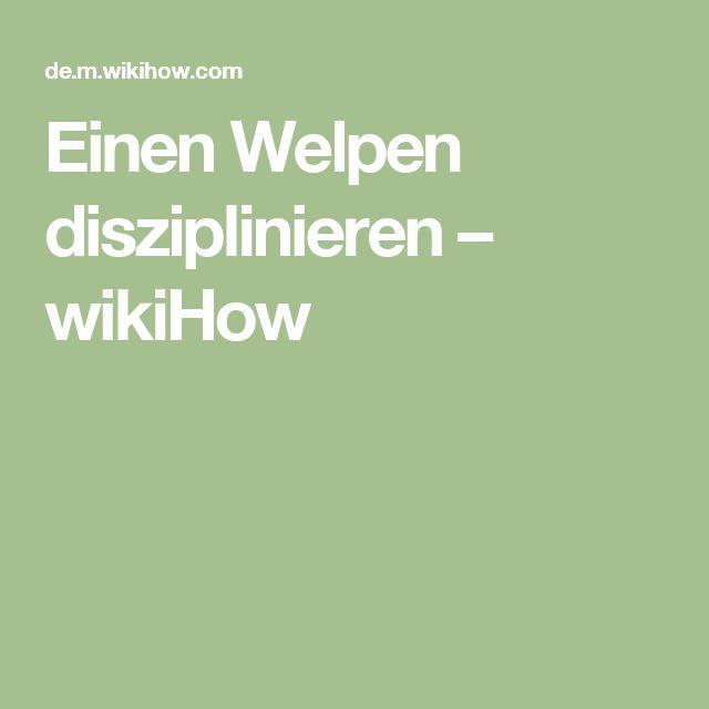 Einen Welpen disziplinieren – wikiHow
