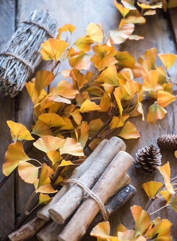 Silk Ginkgo Leaf Bunch 18 Tall