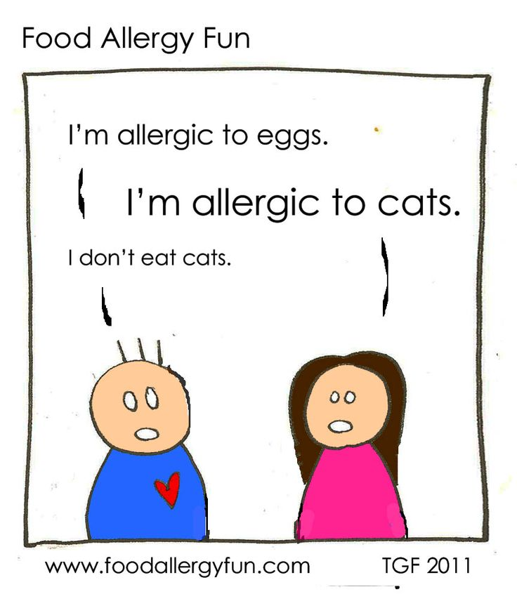 Food Allergy Fun: I don't eat cats.---but we might have unknowingly while traveling abroad...