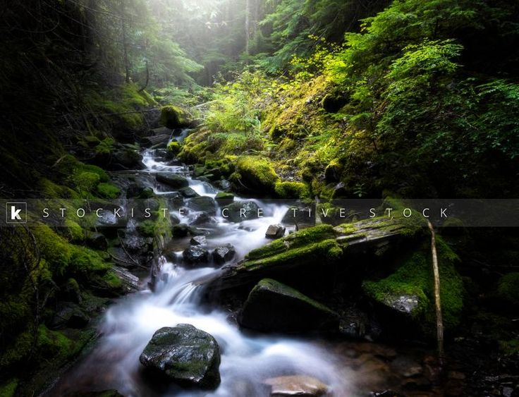 Beautiful green stream in forest. A long exposure by Tyler Lillico.  Stockiste.com  Creative stock + Exclusivity on the GO!   Download Link: https://www.stockiste.com/display/beautiful-green-stream-in-forest/9892  #Stockiste, #StockisteCreativeStock, #Stockphoto, #Stockimage, #Photography, #Photographer, #TylerLillico, #ContentMarketing, #Marketing, #Storytelling, #Creative, #Communication, #Forest, #Stream, #Green, #Mossy,  beautiful green stream in forest © Tyler Lillico