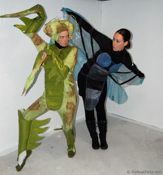 Mantis vs Dragonfly, from http://thebugchicks.com/blog/#