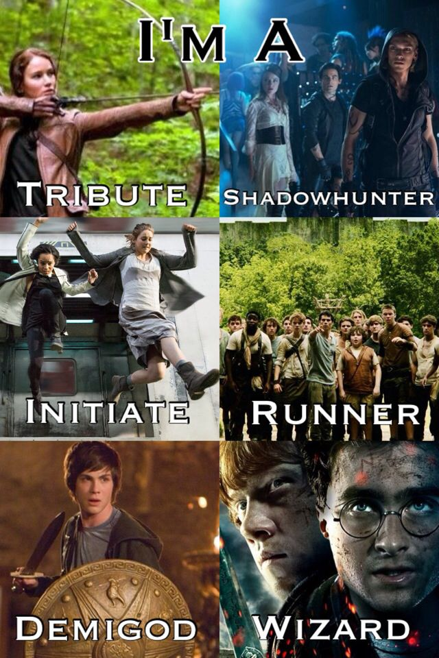 ❥ The Hunger Games ❥ The Mortal Instruments ❥ Divergent ❥ The Maze Runner ❥ Percy Jackson and the Olympians ❥ Harry Potter ❥