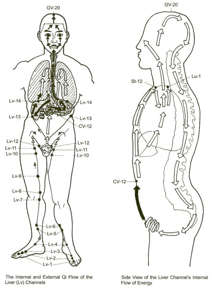 234 best Acupuncture points & Meridians images on