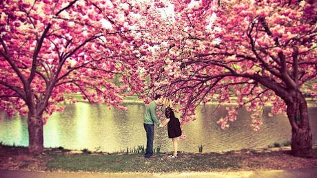 Love Couples images wallpapers
