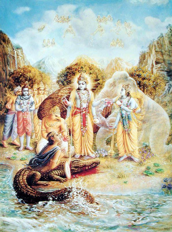 Gajendra regains his spiritual form