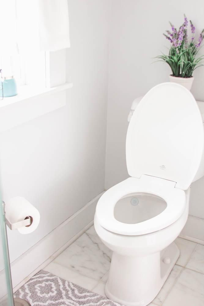 The Easiest Way To Clean Your Bathroom Toilet This Spring Pinterest Toilets And Easy