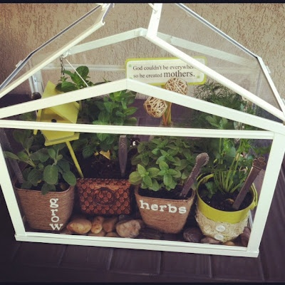 This Is The Ikea Table Top Greenhouse! Cute Eh! Ikea TerrariumGarden  TerrariumHerbs ...
