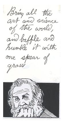 a review of walt whitmans poem leaves of grass A guide to walt whitman's leaves of grass - the academy of american poets is the largest membership-based nonprofit organization fostering an appreciation for contemporary poetry and supporting american poets.