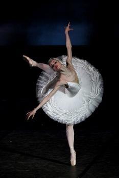 Good Swan, Bad Swan: Dancing Swan Lake