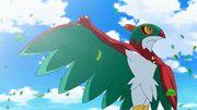 Hawlucha, el Pokémon lucha libre. Como posee un estilo artístico para ejecutar sus movimientos, Hawlucha se enorgullece mucho de su elegancia.