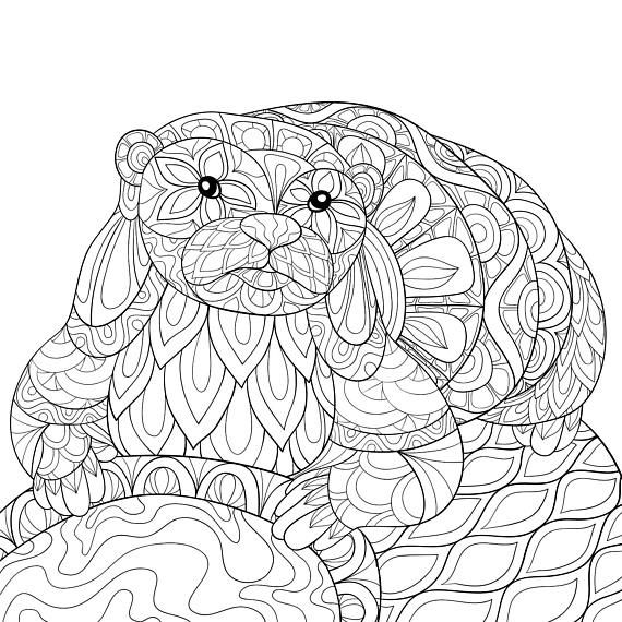 Adult Coloring Page Otter Animal Zen Tangle