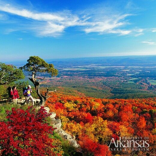 Places To Visit In The Fall In Usa: Coming Soon: Arkansas's Signature Fall Foliage! This Shot