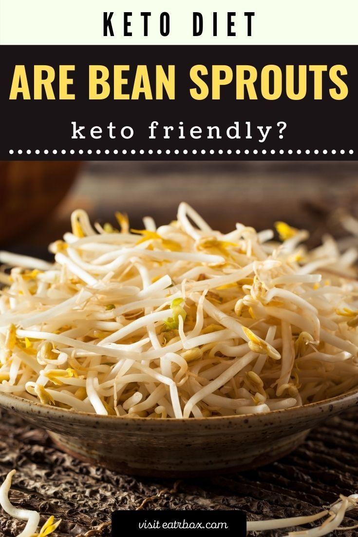 Are Bean Sprouts Keto Friendly Sprout Recipes Keto Diet Recipes Keto