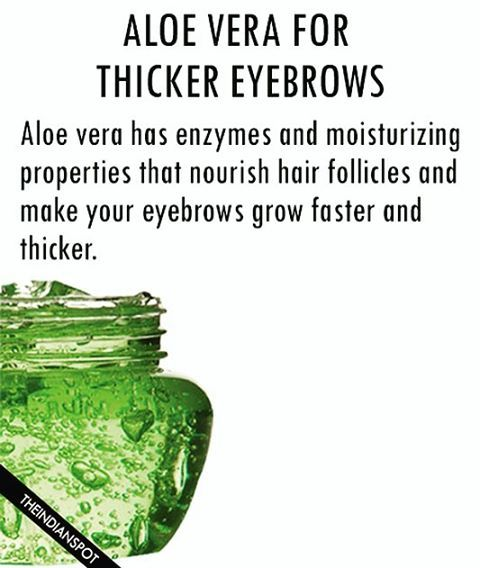 Aloe vera gel is a proven remedy for thick brows. Besides boosting up the growth of your eyebrows, it also helps in softening and adding shine to the skin around the brow. #brow #eyebrows #brows #thick #grow #natural #aloevera #theindianspot