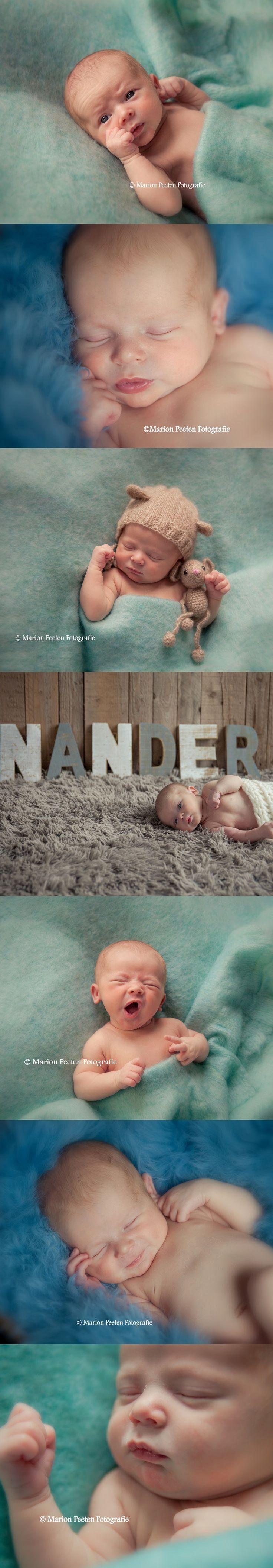 Newborn studio photograpy. Newborn studio fotografie