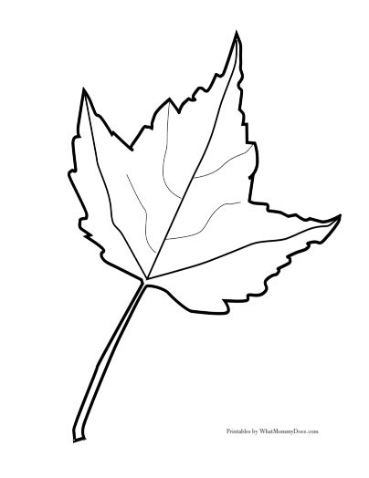 Leaf Template See Best Photos Of Full Page Fall Leaf Template