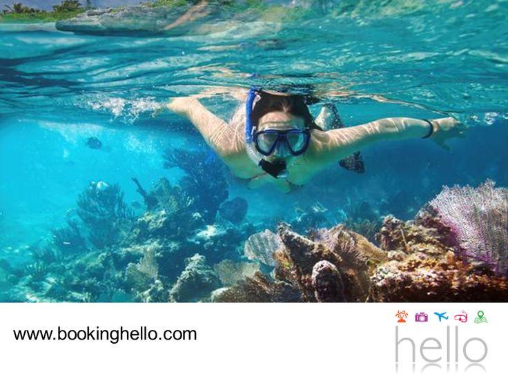 EL MEJOR ALL INCLUSIVE AL CARIBE. Al sur de los límites de la Reserva de Sian Ka'an, se encuentra La Gran Costa Maya, una zona rodeada de impresionante naturaleza, ideal para adentrarse en la experiencia del snorkeling o buceo para conocer la fauna marina y contemplar sus arrecifes coralinos. En Booking Hello, te ofrecemos el mejor precio del mercado para viajar con todo incluido al Caribe mexicano y sorprenderte con toda su belleza durante tu viaje. #bookinghello