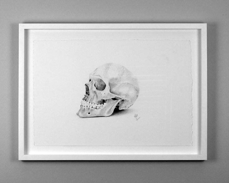 Skull Sketch by Brenden McDonough. Drawn with Fine Liner Pens...