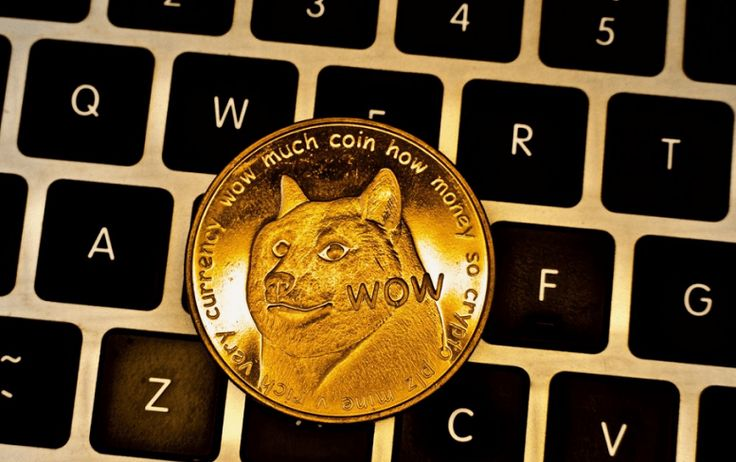 MemeBased Cryptocurrencies Should We Trust Them? Coins