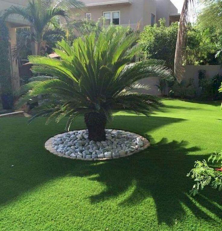 70 idées de design de jardin côté jardin et jardin en gravier Magical – Identification…
