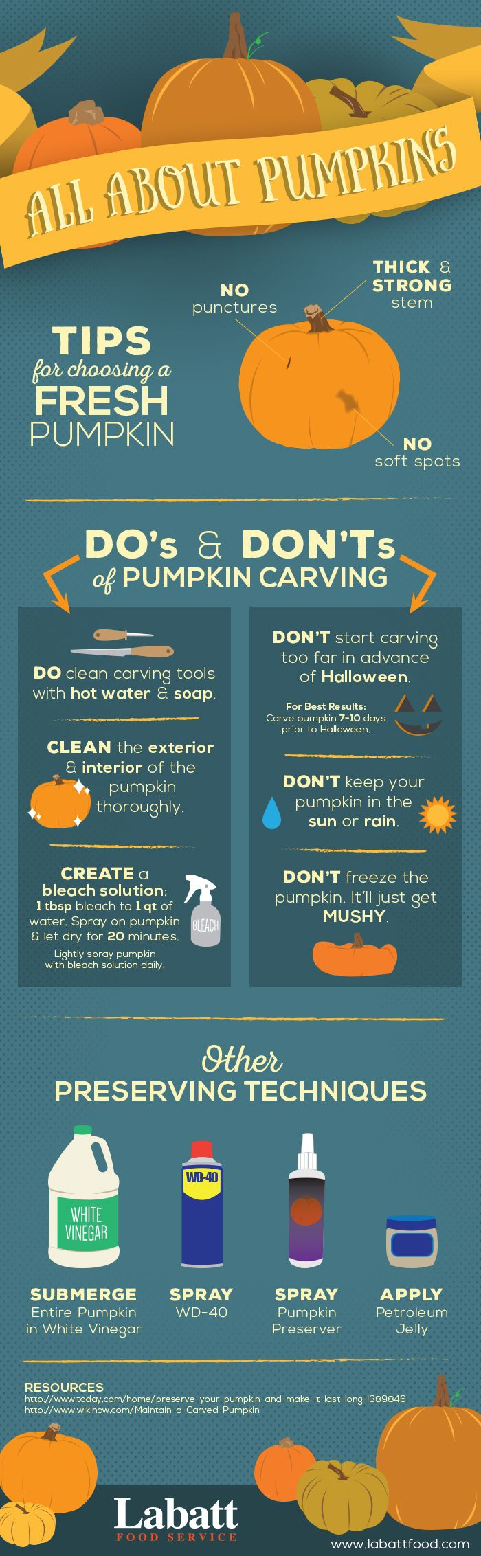 Want to preserve your beautifully carved pumpkin? Tips on how to pick one to preserving them #pumpkin #carving #labattfood