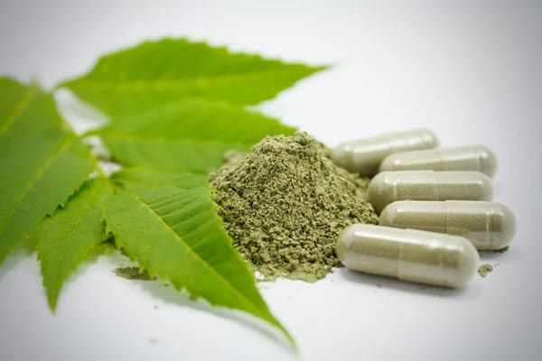%TITTLE% -  Green tea is one of the most commonly consumed teas in the world. Green tea extract is its concentrated form,with just one capsule containing the same amount of active ingredients as an average cup of green tea. Like green tea, green tea extract is a great source of antioxidants. These have... - http://carmige.com/10-benefits-of-green-tea-extract.html