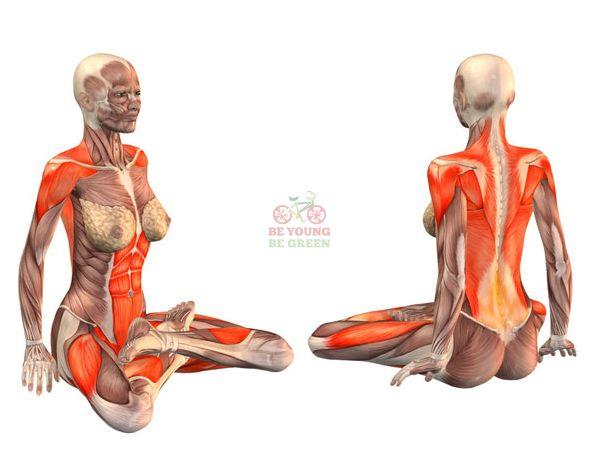 Yoga Asana Sessions Increase Brain GABA Levels: A Pilot ...