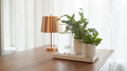 Natural Home Irrigation Systems - The Tableau Irrigation System Mimics Nature's Treatment of Plants
