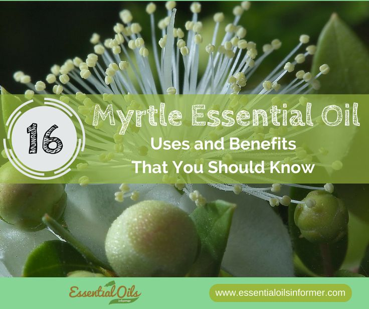 16 AMAZING Myrtle Essential Oil Uses and Benefits That You Should Know -
