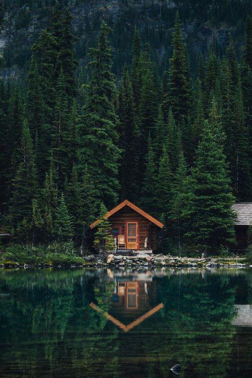 """wildesdorian: """" banshy: """" Untitled // Jamie Ju… – #banshy #cabin #Jamie #J… – Reiseziele"""