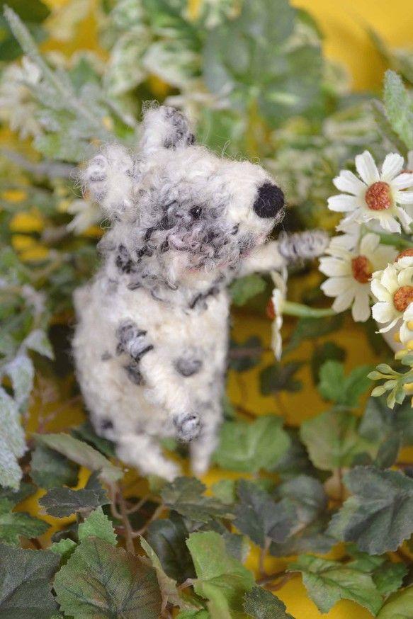 小さな犬のあみぐるみです。イタリアの(たぶん)おしゃれセーターをイメージしたような毛糸。見たとたん、私の頭のなかでいぬができあがりました。ブチとふわっとした感...|ハンドメイド、手作り、手仕事品の通販・販売・購入ならCreema。