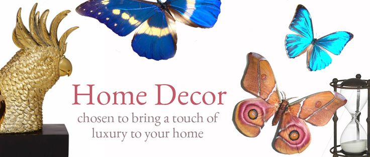 Banner for Trend Collections