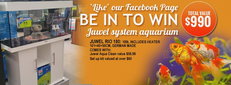 """""""LIKE"""" our Facebook page and be in to WIN your own aquarium valued at $990"""