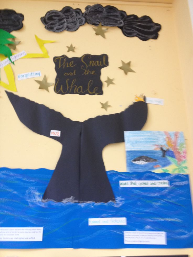 The snail and the whale display in progrrss