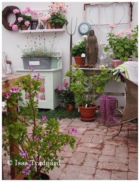 Isa's Garden: Ram happiest WITHOUT grounding!