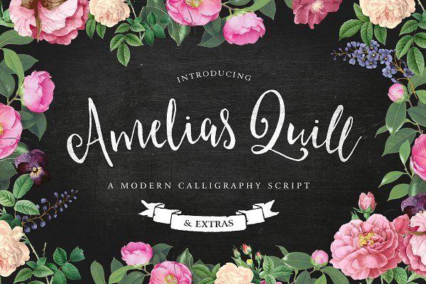 Amelia's Quill Script + Bonus - Script