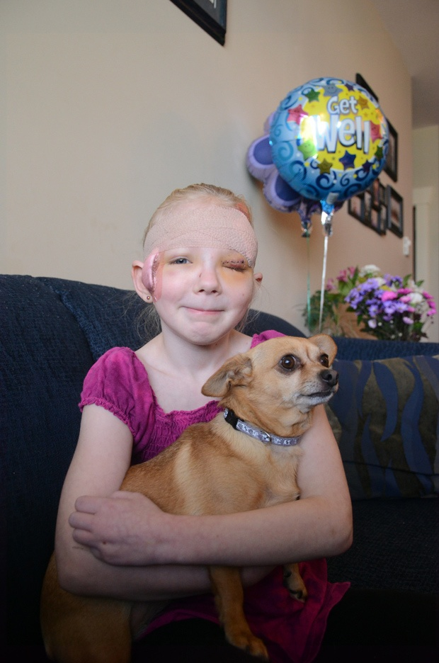 8 yr old girl in BC was saved from a pitbull attack by a little chihuahua - both survived :)